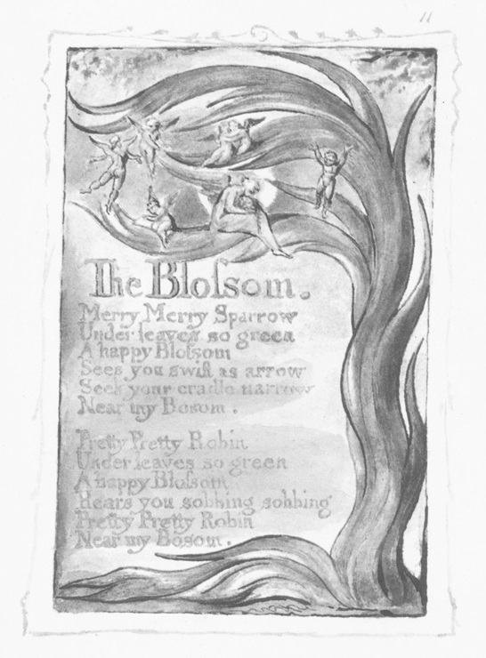 blossom-william-blake.jpg