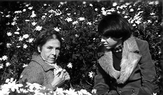 harold-and-maude-hal-ashby.jpg